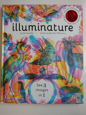 Illuminature Children's Book – A Review