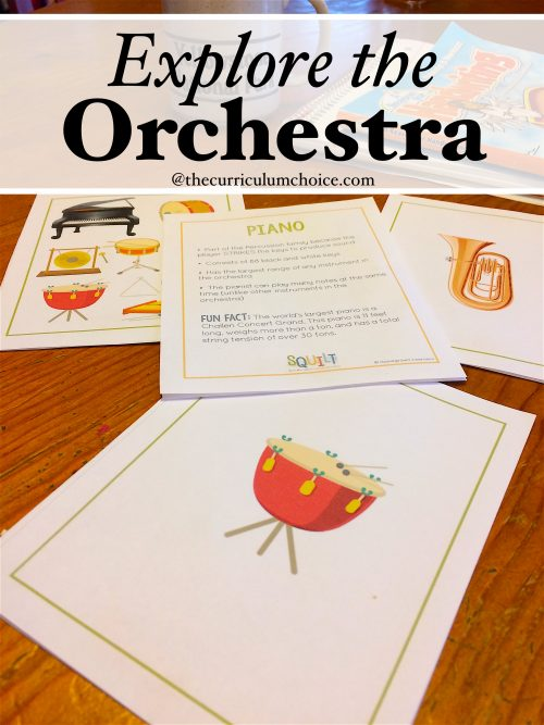 Do your children know the names of the instruments of the orchestra? What about the families of musical instruments? Time to explore the orchestra!