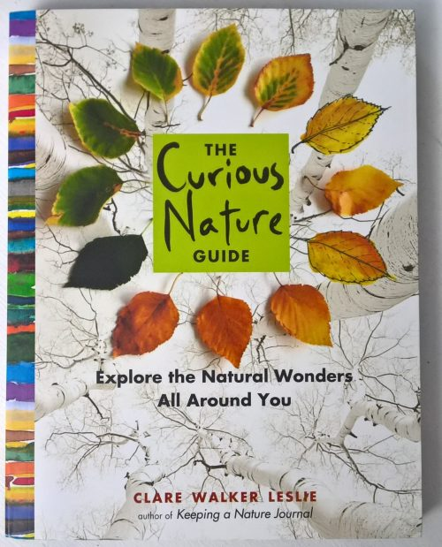The Curious Nature guide is a lovely gentle introduction - or reintroduction - to getting outside and exploring. Explore the natural wonders all year round.