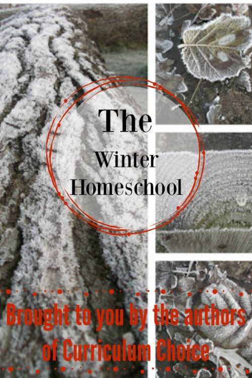 The Winter Homeschool from the authors of Curriculum Choice is packed with lots of inspiration to carry you through these cold dark months.