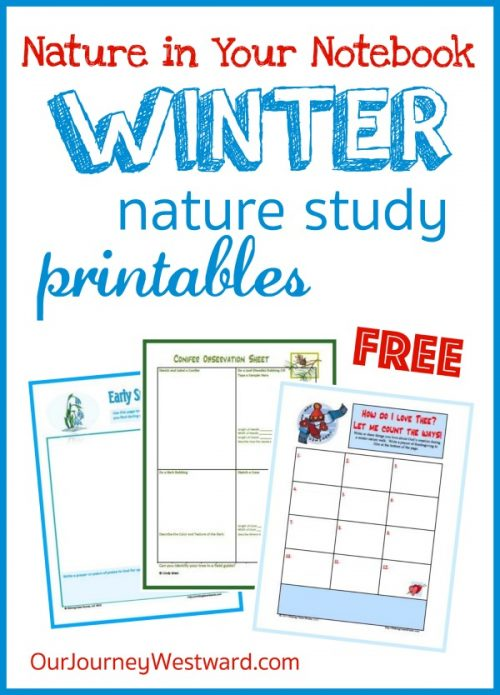 Free winter nature notebooking pages #naturestudy #winter