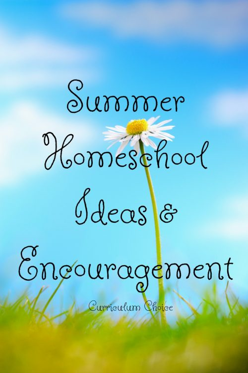 Whether or not your family homeschools year-round, the summer time homeschool routine is apt to take on a different flair. Need some summer homeschool ideas and encouragement? We have a big list for you!