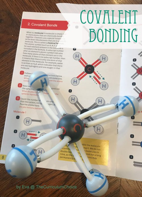 Exploring Covalent Bonding with Home Science Tools: A Mini-Unit from Eva