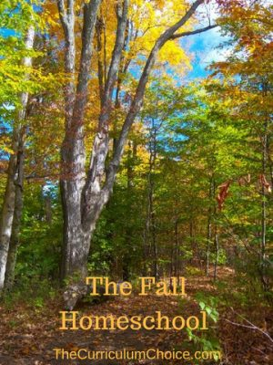 Enjoy the last weeks of summer while you put a few wise finishing touches on your plans for fall. Here's some inspiration for the fall homeschool from the veteran homeschoolers who write for The Curriculum Choice.