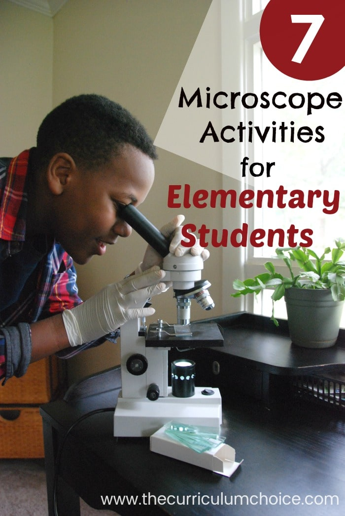 7 Fun Microscope Activities for Homeschool Elementary Students. My children get very excited using REAL science equipment! Your student might appreciate this hands-on learning. Microscopes and kits are pricier items to invest in — but can be used by multiple children for many years to come.