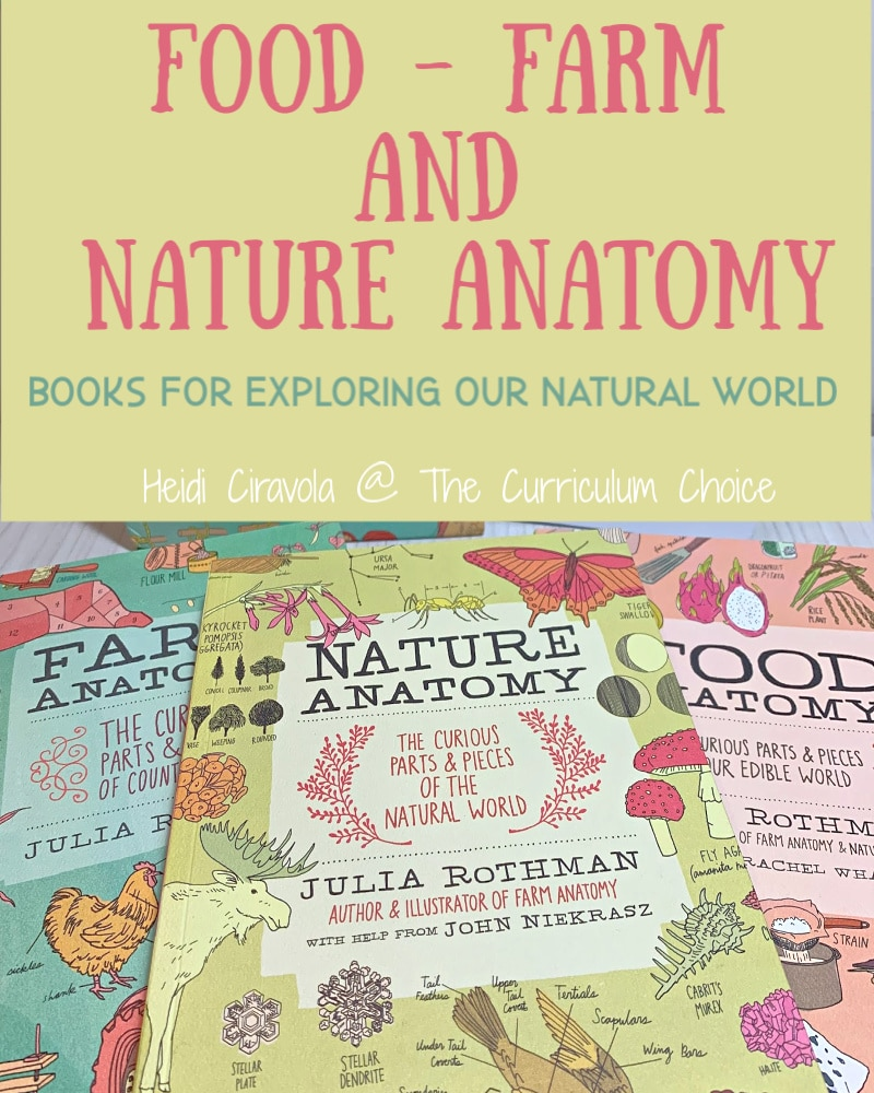Farm Food and Nature Anatomy: Books to Explore our Natural World are 3 beautifully illustrated, wholly educational, and fun. They are a great addition to any nature study and a must have on any homeschool bookshelf! from Heidi Ciravola @The Curriculum Choice