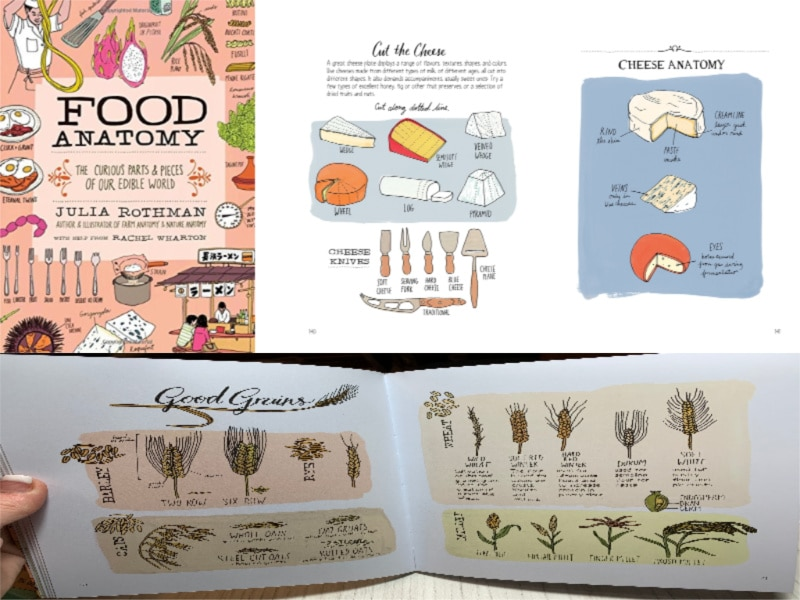 Farm Food and Nature Anatomy: Books to Explore our Natural World are 3 beautifully illustrated, wholly educational, and fun. They are a great addition to any nature study and a must have on any homeschool bookshelf!