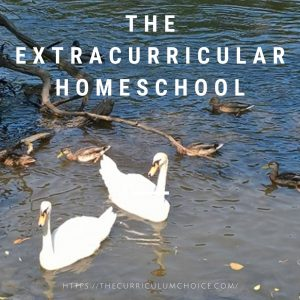 the extracurricular homeschool