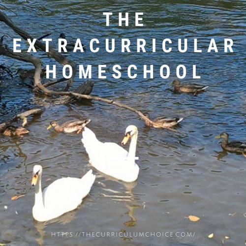 Here at The Curriculum Choice we usually talk about homeschool curriculum, but a huge part of homeschooling involves extracurricular activities. The Curriculum Choice moms have put together the extracurricular homeschool.