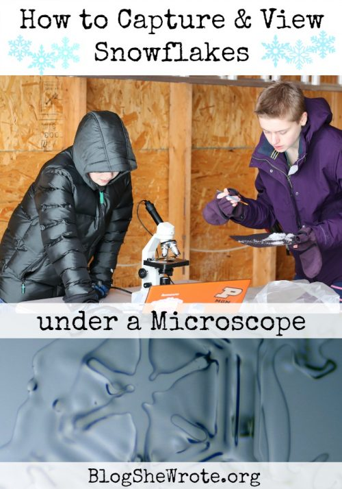 snowflakes under a microscope and students looking under a microscope