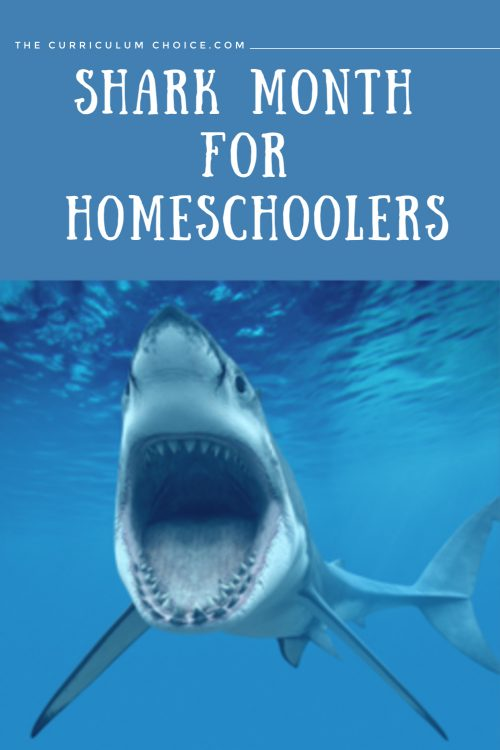 Summer time is a fantastic time to kick back and enjoy some summer themed learning adventures. Here at The Curriculum Choice, we're sharing our shark themed ideas. You can enjoy a shark month for homeschoolers!