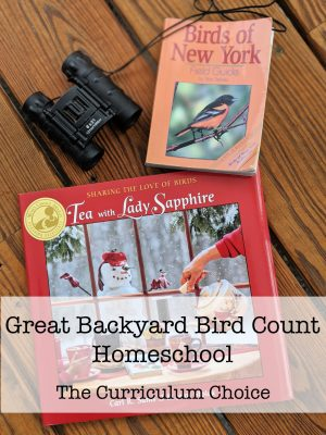 It's that time of the year when citizen scientists everywhere are gearing up for the Great Backyard Bird Count (GBBC). It's easy to participate and the bird count is a great way to contribute to actual data being used by ornithologists. You can have a Great Backyard Bird Count Homeschool!