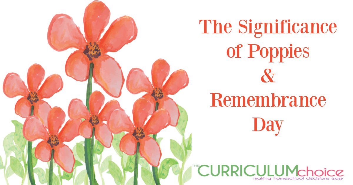 The Significance of Poppies and Remembrance Day